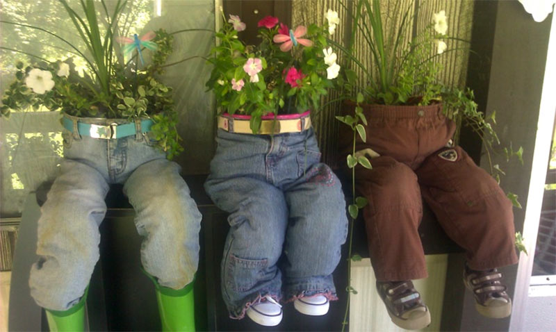 Plants in old trousers