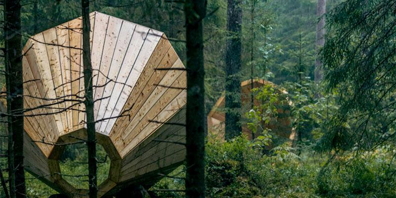 Forest megaphones