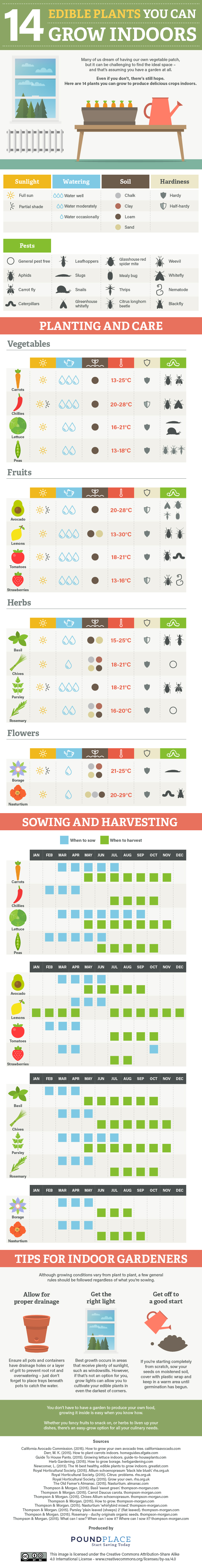 14 Edible Plants You Can Grow Indoors - infographic