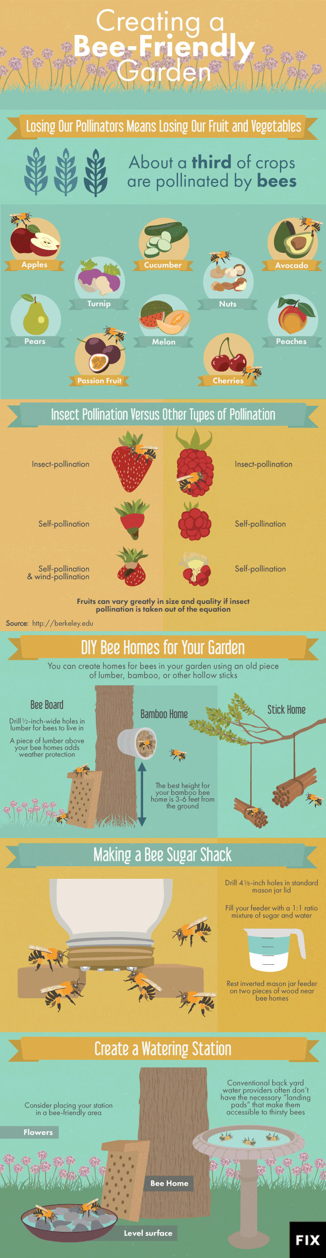 Making your garden bee friendly - infographic