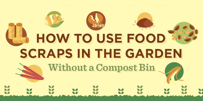 How to use food scraps in the garden