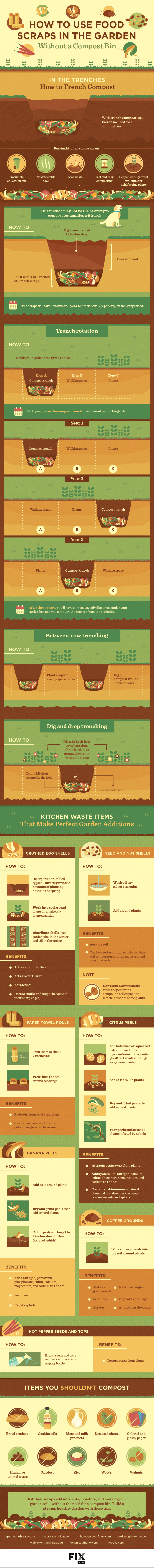 How to use food scraps in the garden - infographic