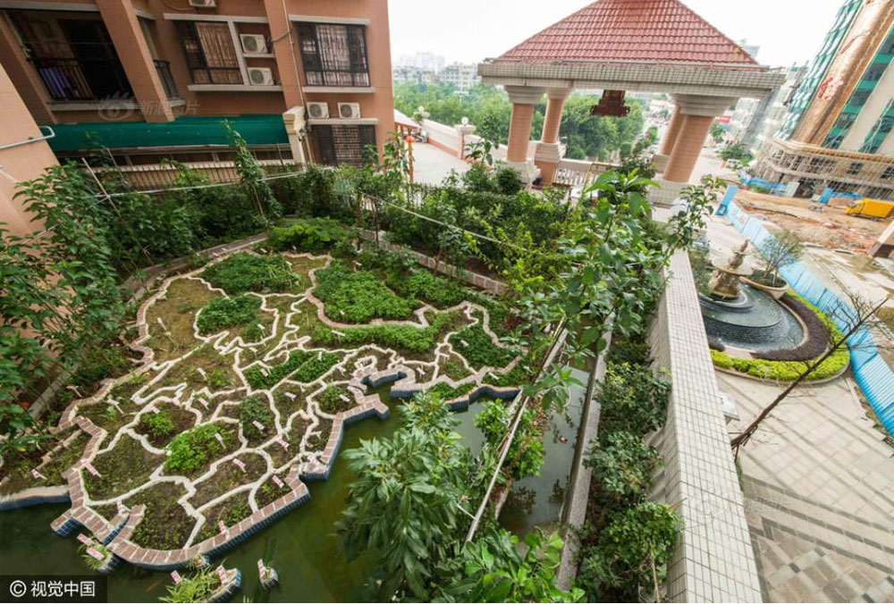 Chinese garden map