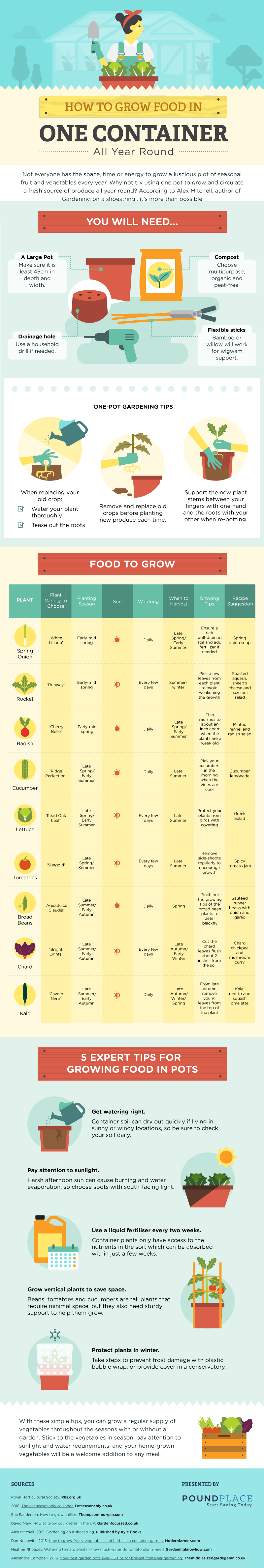 How to grow food all year round - infographic