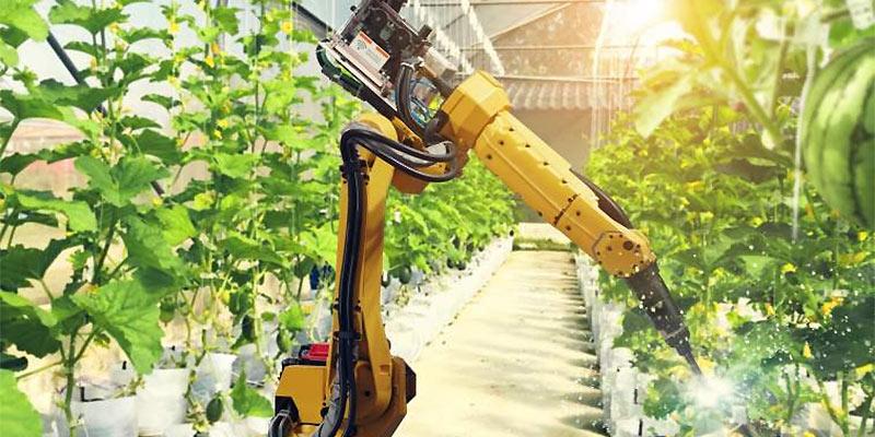 agricultural robot